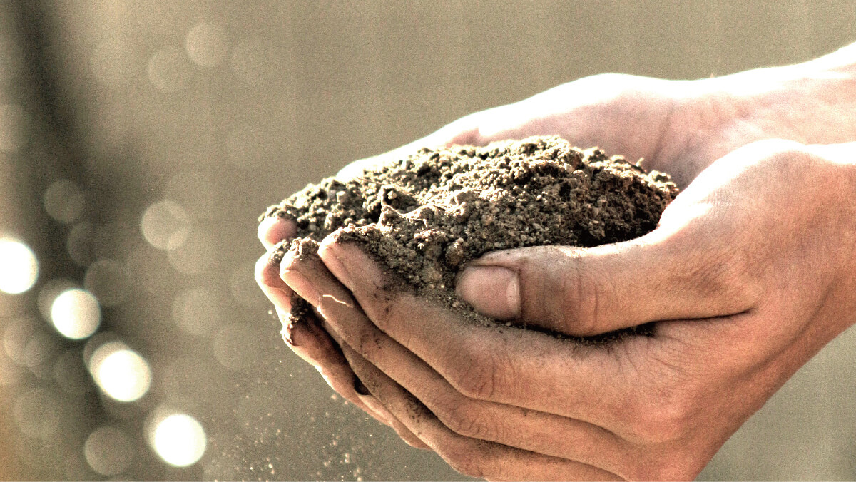 オーガニック栽培で作られた原料